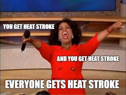 heatstroke.jpg
